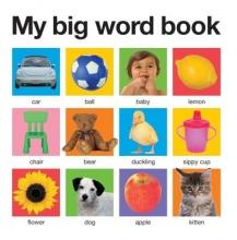 My Big Word Book