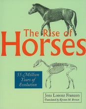 Jens Lorenz Franzen The Rise of Horses