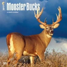 Monster Bucks 2017 Calendar