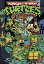 Teenage Mutant Ninja Turtles Adventures 12
