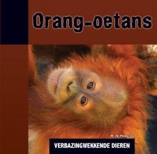Michael De Medeiros Orang-oetans