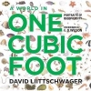Liittschwager, David,A World in One Cubic Foot