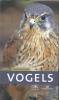 <b>Volker  Dierschke</b>,Kosmos Natuurgids Vogels