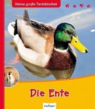 Hédelin, Pascale Die Ente
