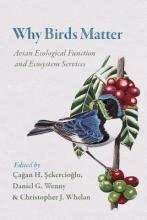 agan  sekercioglu Why Birds Matter