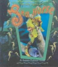 Kalman, Bobbie Life Cycle of a Sea Horse
