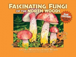 Mollen, Cora,   Weber, Larry Fascinating Fungi of the North Woods