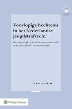 Yannick Nelson van den Brink , Voorlopige hechtenis in het Nederlandse jeugdstrafrecht