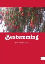 Nasrin  Hamidi Bestemming