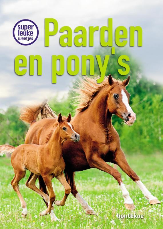 Christina Braun,Superleuke weetjes over paarden en pony's