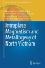 Tran, Hoa Trong,Intraplate Magmatism and Metallogeny of North Vietnam