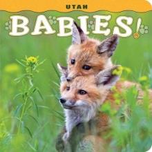 Lehmann, Steph Utah Babies!