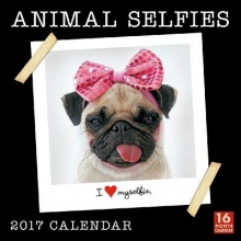 Sellers Publishing, Inc Cal 2017-Animal Selfies