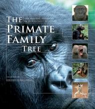 Ian Redmond The Primate Family Tree