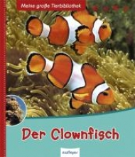 Allain, Gireg Der Clownfisch