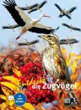 Schmidt, Thomas Entdecke die Zugvögel