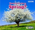 Smith, Sian,What Can You See in Spring?