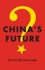 David Shambaugh,China`s Future