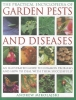 Mikolajski, Andrew,Practical Encyclopedia of Garden Pests and Diseases
