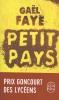 Faye, Gaël,Petit pays
