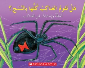 SCHOLASTIC Q A DO ALL SPIDERS SPIN WEBS