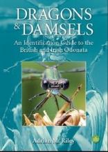 Adrian Riley Dragons and Damsels