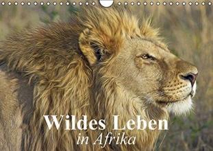 Stanzer, Elisabeth Wildes Leben in Afrika (Wandkalender 2016 DIN A4 quer)