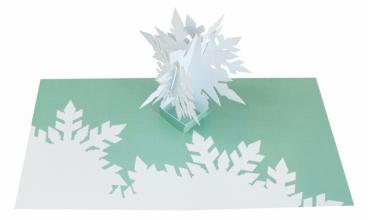 2totango Snowflakes 05