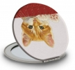 , Spiegeltje francien katten