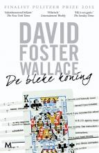 David  Foster Wallace Bleke koning