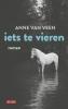Anne van Veen,Iets te vieren