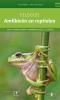 Veldgids amfibieen en reptielen,West- en Centraal Europa - handige veldtips - unieke larventabel