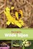Pieter van Breugel,Basisgids Wilde bijen