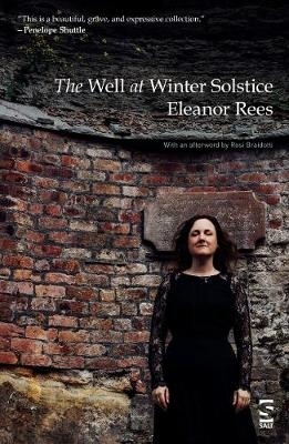 Eleanor Rees,The Well at Winter Solstice