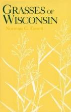 Norman C. Fassett Grasses of Wisconsin