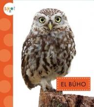 Dieker, Wendy Strobel El Buho (Owls)
