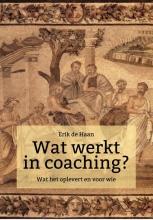 Erik de Haan , Wat werkt in coaching?