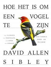 David Allen Sibley , Hoe het is om een vogel te zijn
