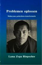 Lama Zopa Rinpochee , Problemen oplossen