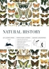 Pepin van Roojen ,Natural History - Vol 72 Gift Papers