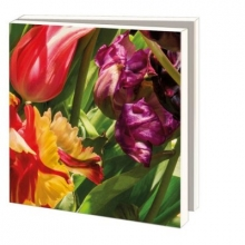 Wmc842 , Notecards 10 stuks 15x15 cm bloemen frans hals museum