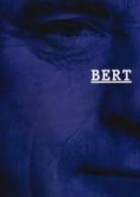Bert Schierbeek , Bert en het beeld