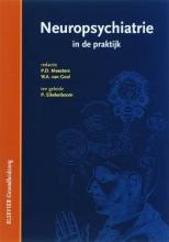G.J. Biessels , Neuropsychiatrie in de praktijk