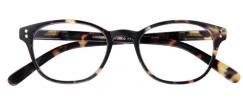 G59910 , Leesbril Cambridge G59900 Bruin 1.00