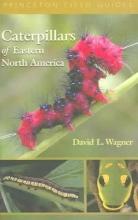 David L. Wagner Caterpillars of Eastern North America