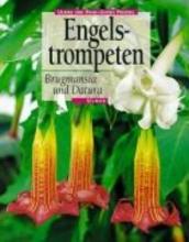 Preißel, Ulrike Engelstrompeten. Brugmansia und Datura