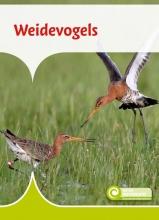 Geert-Jan Roebers , Weidevogels