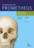 Michael  Schünke, Erik  Schulte, Udo  Schumacher,Prometheus Anatomische atlas  3