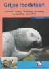 Natascha Snelder bouman,Over dieren De grijze roodstaartpapegaai