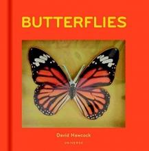 David,Hawcock Butterflies Pop-up